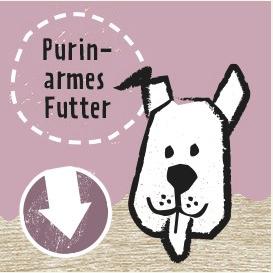 purinarmes Hundefutter